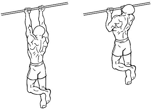 chin-ups-voor-biceps